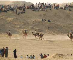 Jaisalmer Tourism Honeymoon