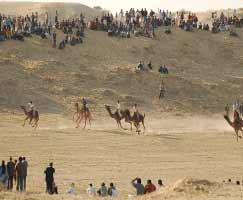Jaisalmer Tourism Honeymoon